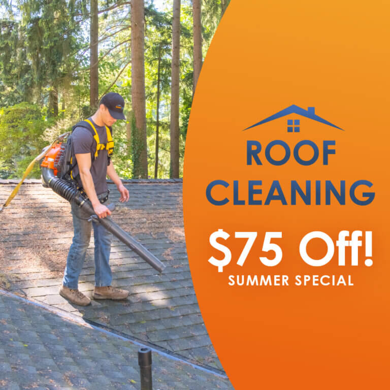 Roof Cleaning Special